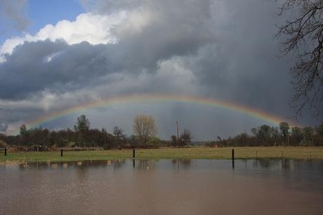 rainbowe